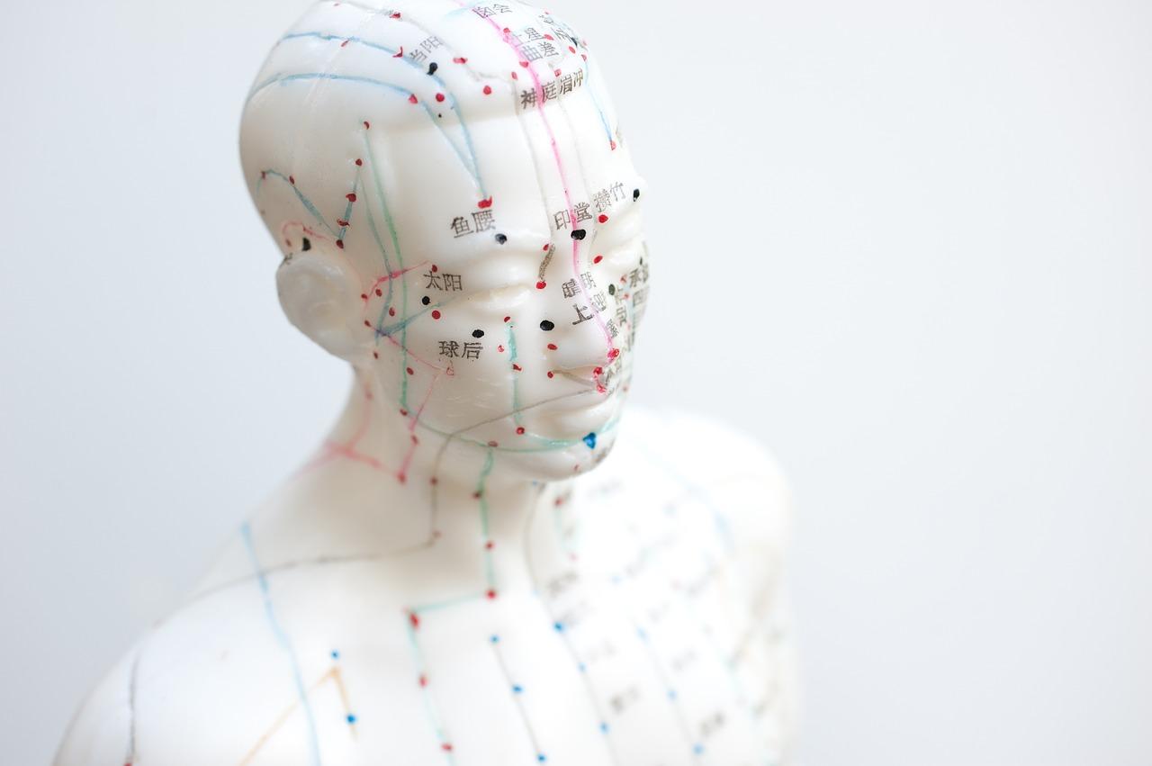 L'acupunture anti-âge : vive les aiguilles !